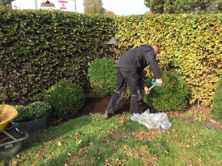 Plantenlijst 19 november - PlantPlezier.nl