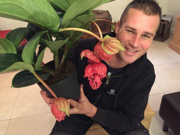 Afscheid met een plant - PlantPlezier.nl
