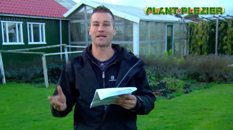 Vraag over vijgen - PlantPlezier.nl