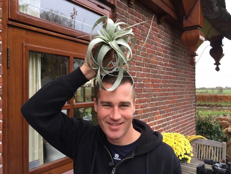 Creatief met Tillandsia - PlantPlezier.nl
