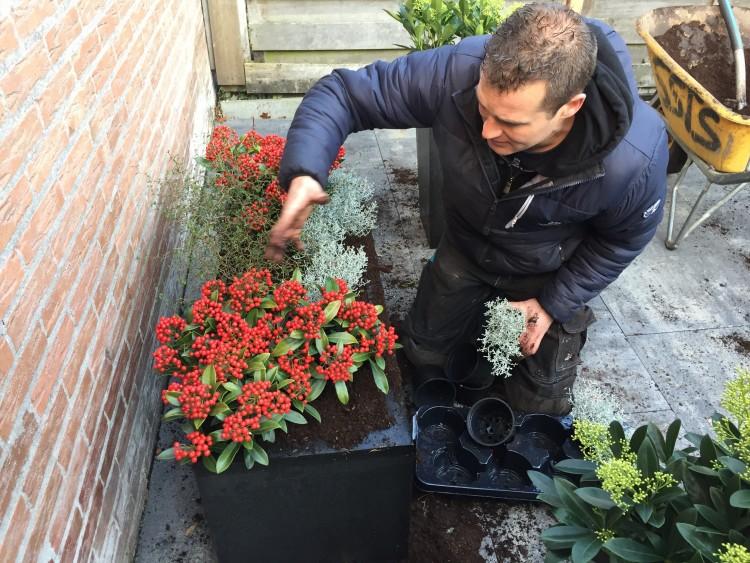 Bloembak in de winter - PlantPlezier.nl