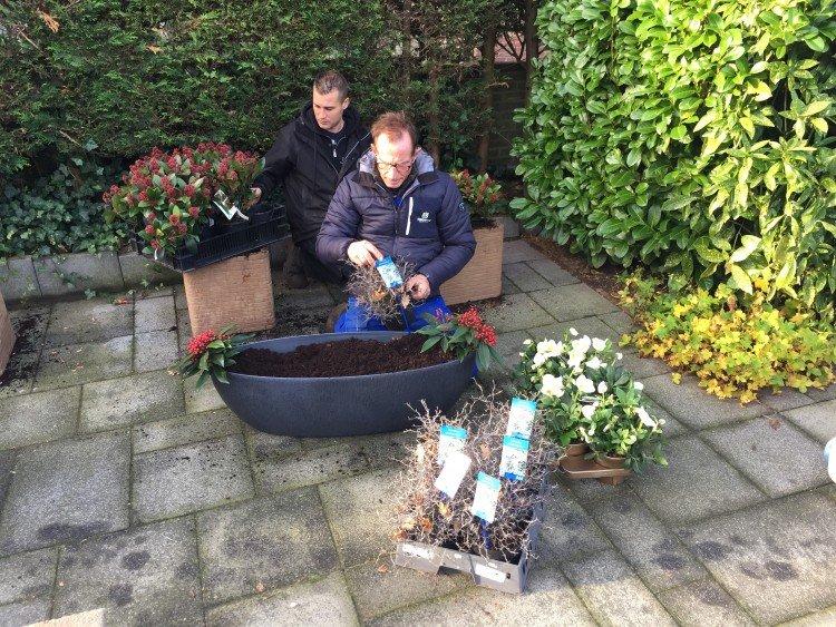 Plantenlijst 10 december 2016 - PlantPlezier.nl