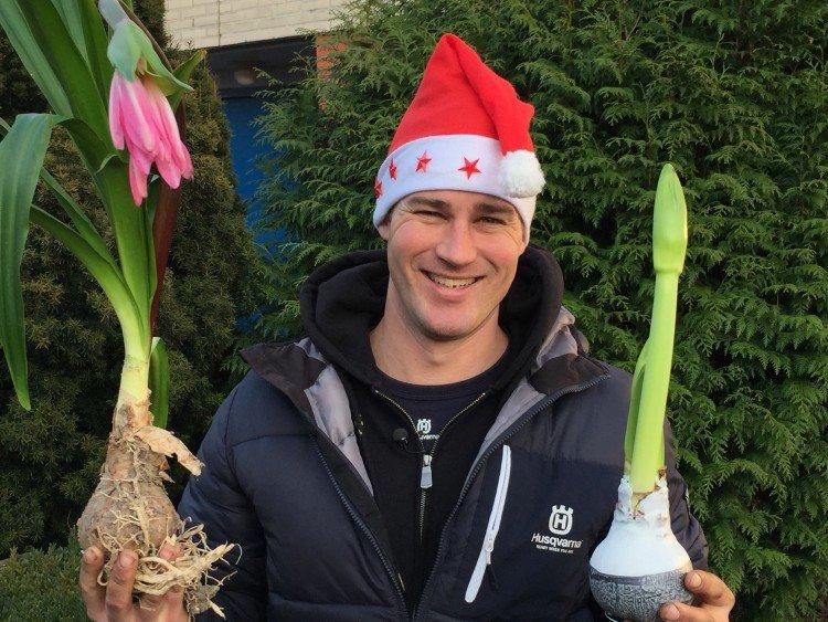 Het 'smartste' kerstcadeau van het jaar - PlantPlezier.nl