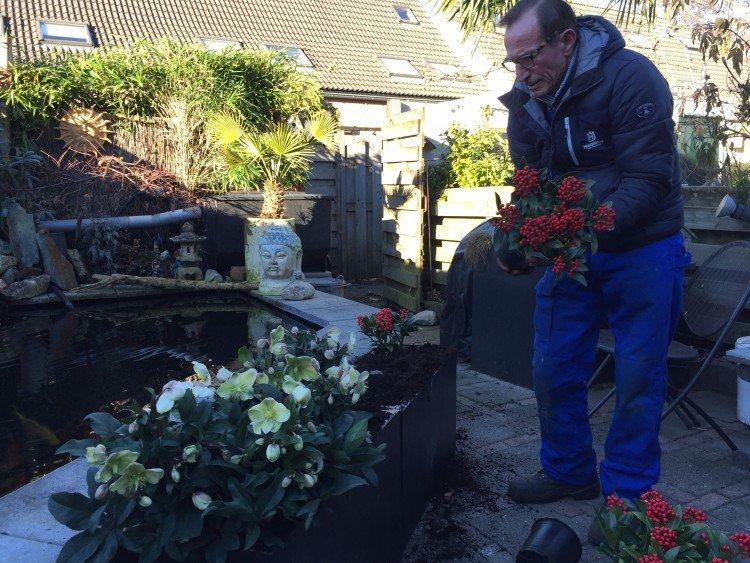 Te zien bij Rob - PlantPlezier.nl