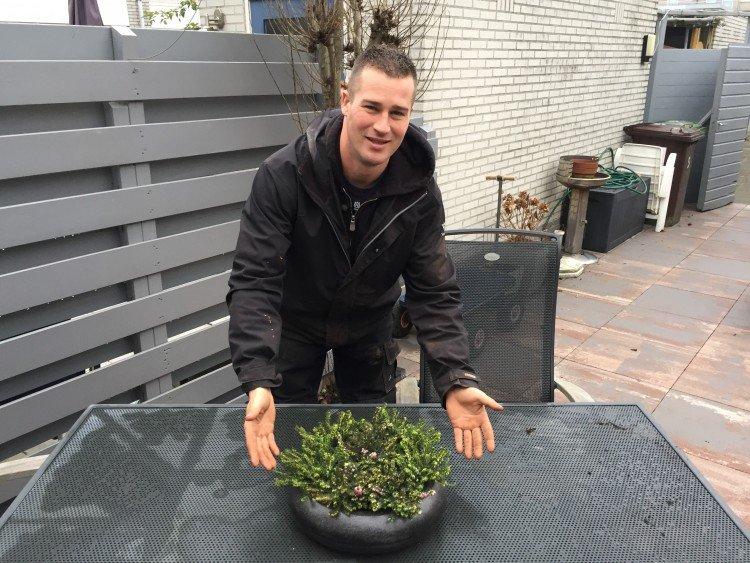 erica - ivo - plantplezier