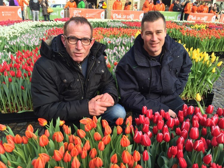 Tulpendag 2017 - PlantPlezier.nl