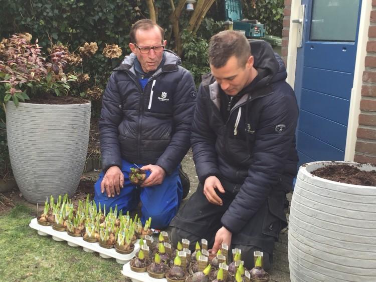 Voor wie te laat was - PlantPlezier.nl