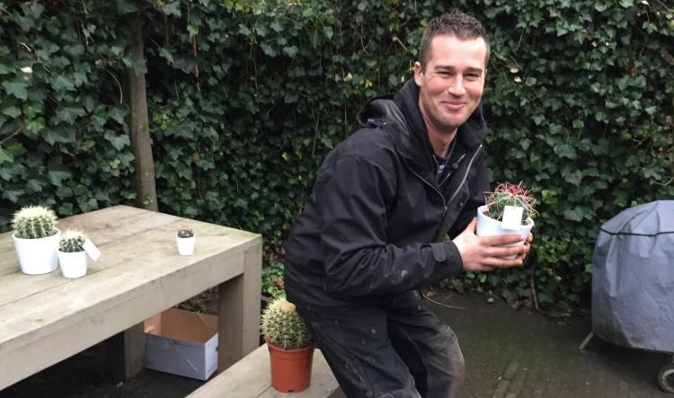 Schoonvaderszetel - PlantPlezier.nl