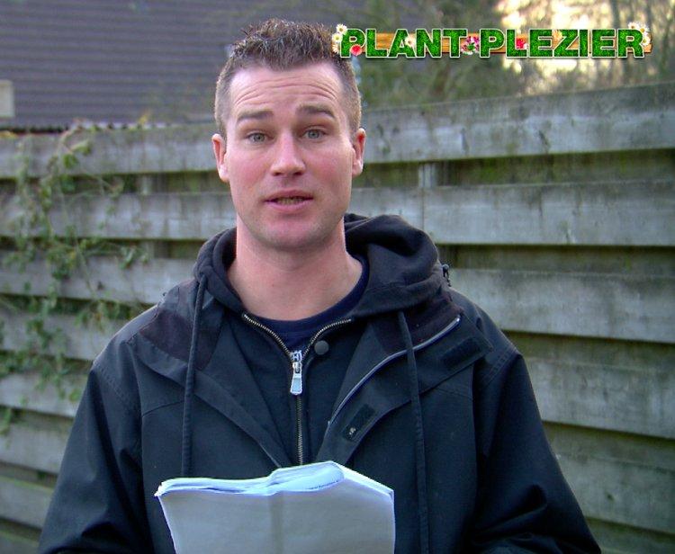 Prunus vraag - PlantPlezier.nl