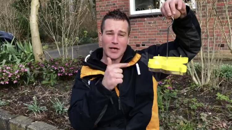 Vlinderlokdoos - PlantPlezier.nl