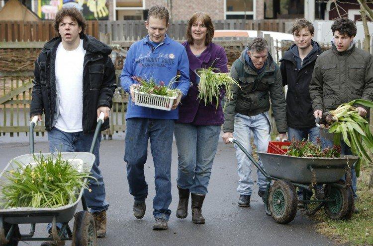 Het bollenasiel - PlantPlezier.nl