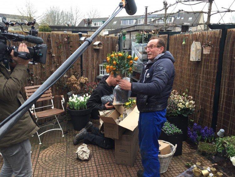 Plantenlijst 11 maart - PlantPlezier.nl