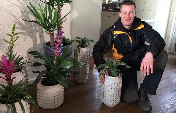 Zo trots als een pauw met zeven lullen - PlantPlezier.nl