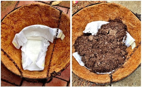 Hanging baskets - PlantPlezier.nl