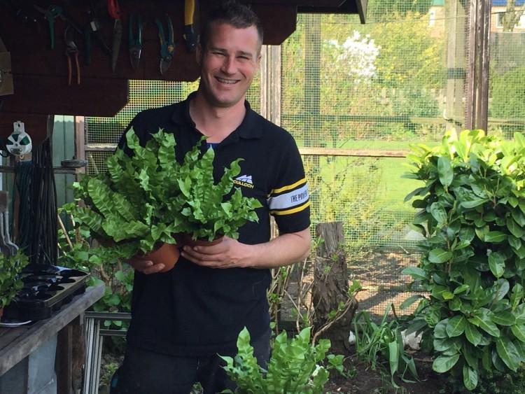 Gekraakt bootje - PlantPlezier.nl