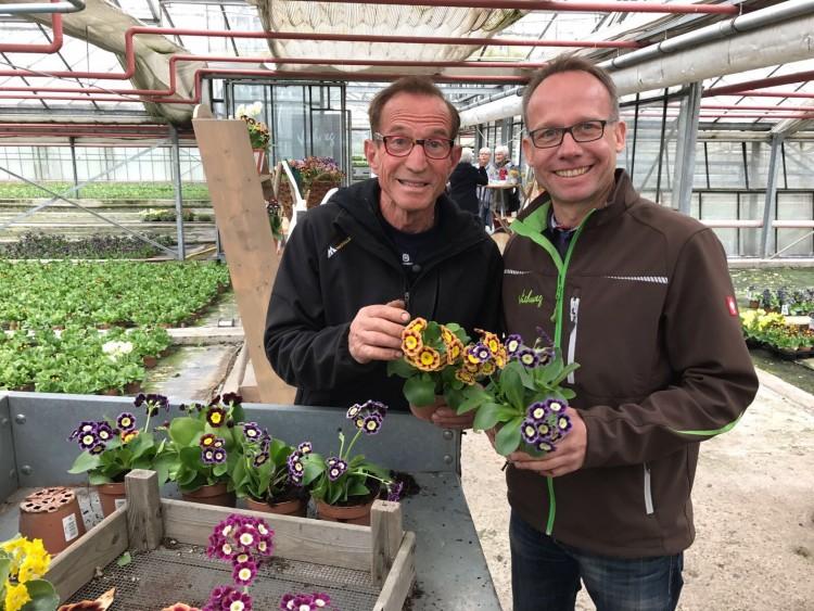 Bijzondere primula - PlantPlezier.nl