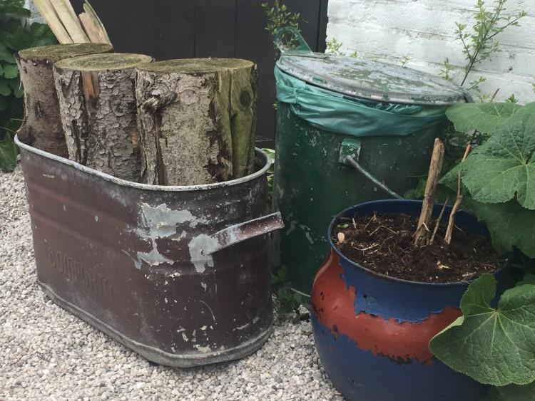 Schuur eens uitmesten - PlantPlezier.nl