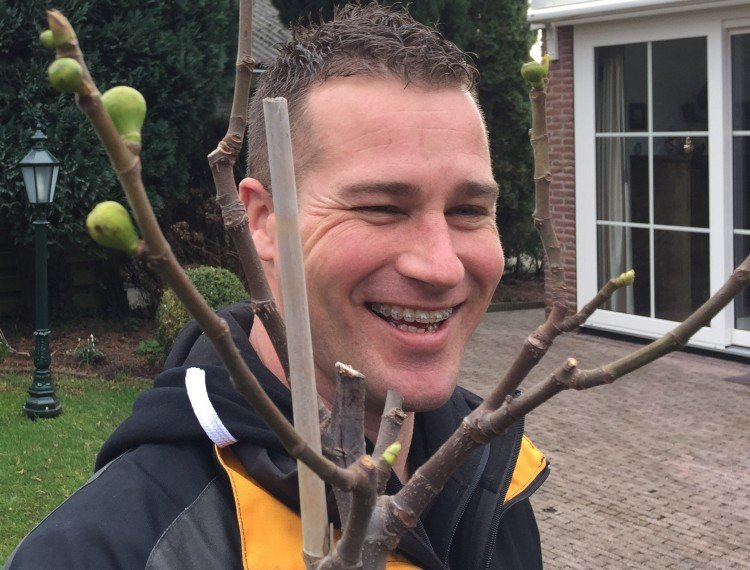 Een plant die klopt - PlantPlezier.nl