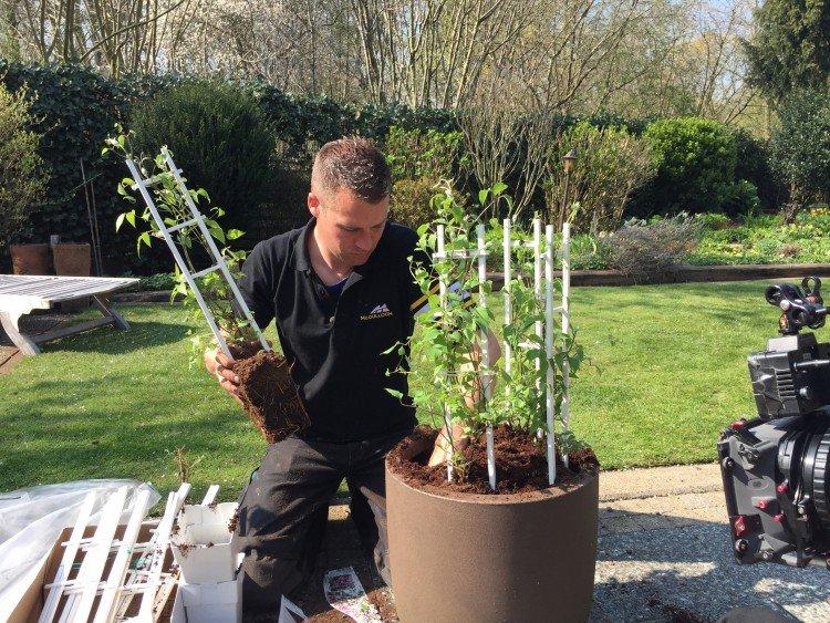 Plantenlijst 22 april - PlantPlezier.nl