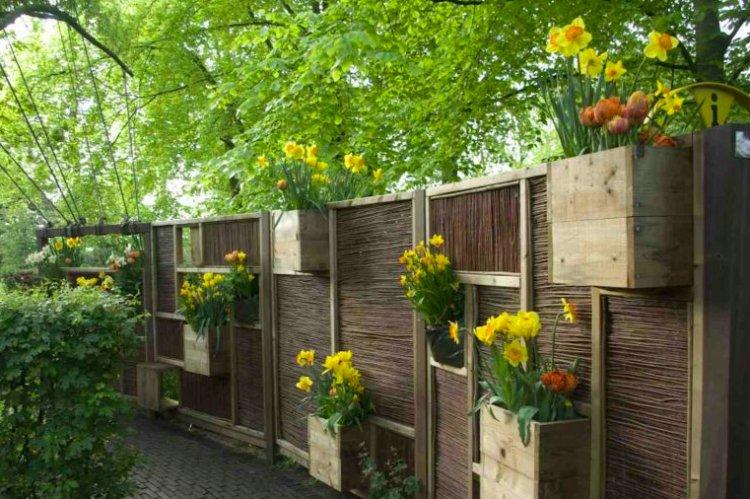 De Buurjongens - PlantPlezier.nl