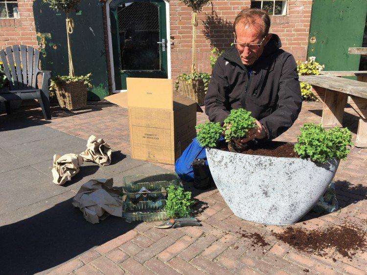 Planten planten - PlantPlezier.nl