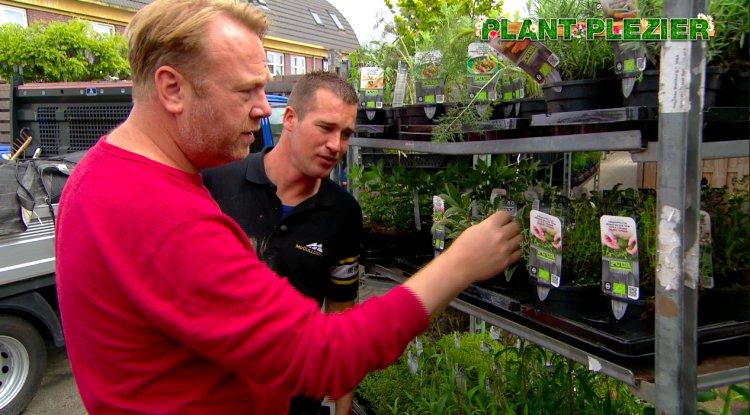 Kruiden - PlantPlezier.nl
