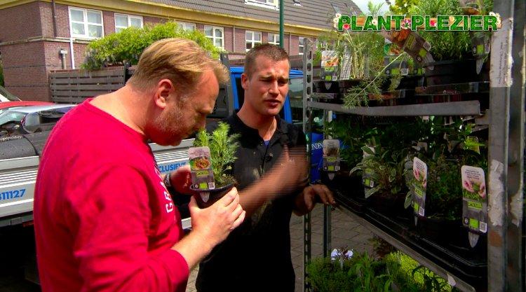 PUUR kruiden - PlantPlezier.nl