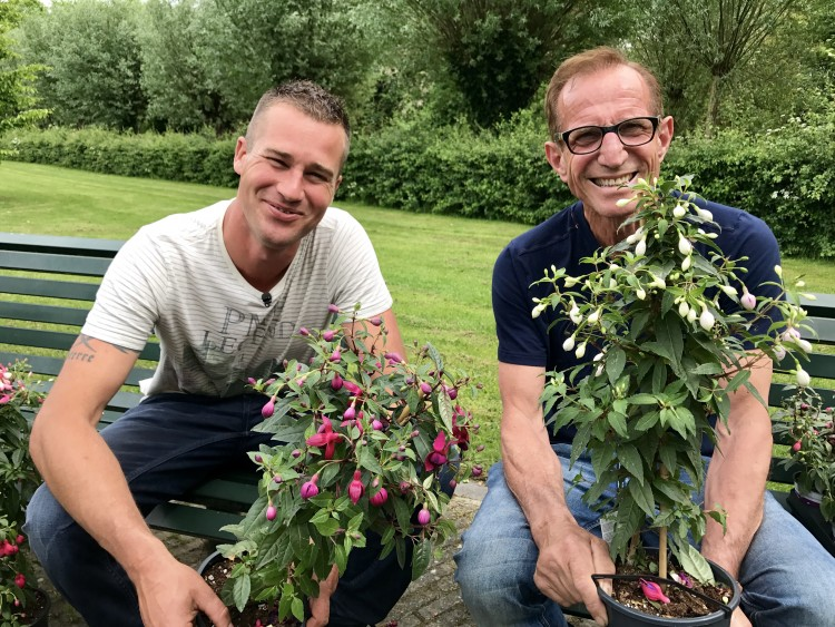 Net zo populair - PlantPlezier.nl